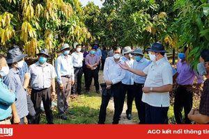 Tri Tôn cần tận dụng tốt cơ hội nông nghiệp