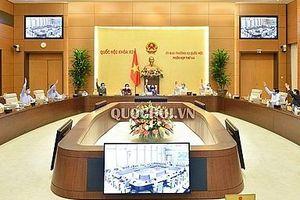 Quyết định thành lập 3 thị xã thuộc tỉnh Thanh Hóa, Phú Yên và Bình Định