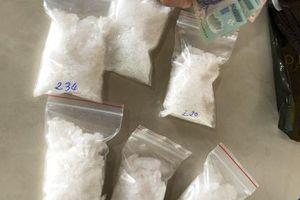 Bắt đôi vợ chồng vận chuyển ma túy từ Vũng Tàu về Cà Mau
