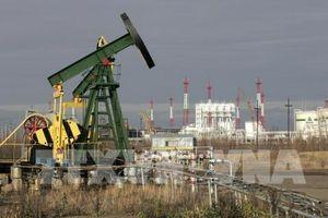 Mỹ: Thẩm phán Tòa án quận dừng gần 300 thỏa thuận khai thác dầu khí tại Montana