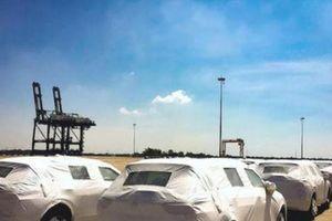Hàng chục xe sang bị 'bỏ quên' ở cảng Hải Phòng: Hải quan nói gì?