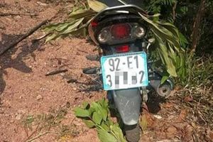 Quảng Nam: Đi hái lan rừng, nam thanh niên rơi xuống vực tử vong