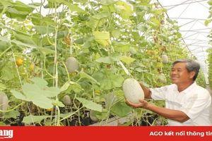 Phát triển sản xuất nông nghiệp ứng dụng công nghệ cao