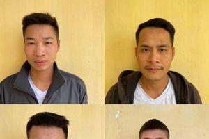 Tạm giam 10 đối tượng trong vụ 'loạn đả' tại Đồ Sơn