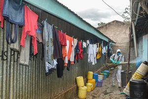 WHO: 190.000 người châu Phi có thể chết vì virus corona