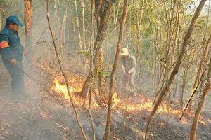 Miền Trung chủ động phòng, chống cháy rừng
