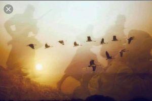 Và ngang trời đàn sếu vẫn bay… bay…