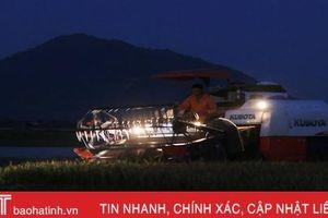 Xem nông dân Hà Tĩnh gặt lúa đêm 'trốn' nóng