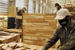 Nhiều doanh nghiệp gỗ phải rao bán nhà máy vì Covid-19