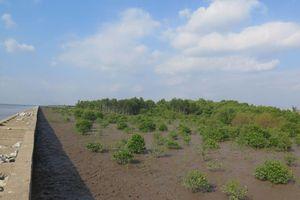 EU hỗ trợ Việt Nam tăng cường khả năng chống chịu và quản lý nước, tài nguyên thiên nhiên