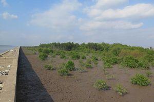 EU và Pháp hỗ trợ 20 triệu euro giúp Việt Nam hướng tới tương lai xanh