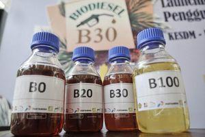 Indonesia xem xét tiếp tục triển khai chương trình diesel sinh học trong bối cảnh giá nhiên liệu giảm