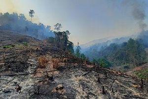 Điều tra nguyên nhân vụ cháy rừng ở xã Mà Cooih