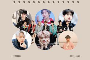 Có thể bạn chưa biết: 11 nam thần tượng này chẳng khác gì fan cứng của BTS!