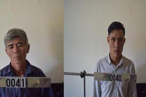 Gia Lai: Ba đối tượng bị khởi tố vì khai thác gỗ trái phép