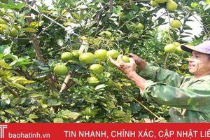Can Lộc phấn đấu xây dựng 10 sản phẩm OCOP năm 2020