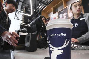 'Starbucks Trung Quốc' tống cổ CEO vì scandal khai khống doanh thu