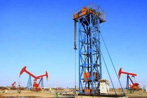 Nhiều quốc gia nới lệnh phong tỏa, giá dầu nhảy vọt 19% trong tuần