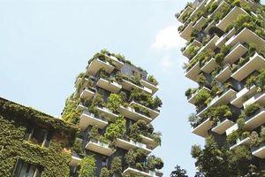 Giữ màu xanh cho kiến trúc