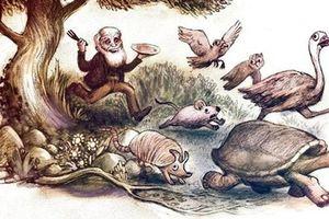 Sở thích ăn uống lạ lùng của Darwin khiến hậu thế không khỏi 'hoảng hồn'