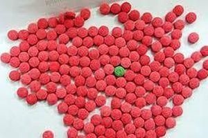 Quảng Bình: Bắt đối tượng mua bán trái phép chất ma túy, thu 306 viên ma túy tổng hợp