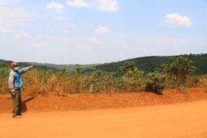 Đắk Song (Đắk Nông): 'Loạn' tình trạng mua bán, phá rừng