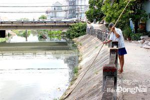 Tìm cách làm sạch các dòng suối nội ô