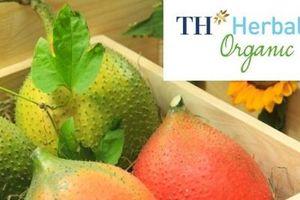 Dược liệu TH và sản phẩm đồ uống thảo dược theo chuẩn ISO 22000