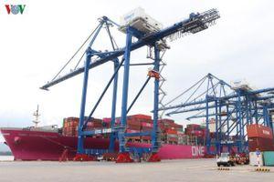 Cảng Container quốc tế Tân Cảng Hải Phòng đón tàu siêu trọng tải