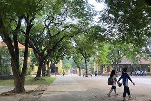 Điều kiện thi vào lớp 10 bốn trường THPT chuyên của Hà Nội