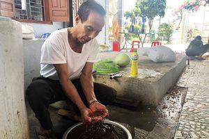 Quan Lạn, Minh Châu thiếu nước sạch