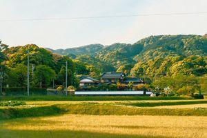 Một ngày về thăm vùng đồng quê Nhật Bản