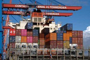 Các nhà sản xuất Đức đang lấy lại động lực xuất khẩu sang Trung Quốc