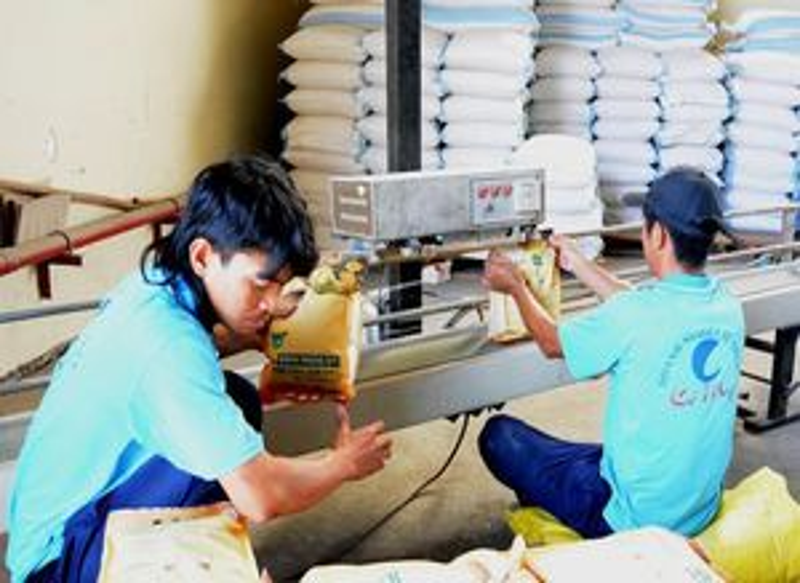 Trung Quốc tăng mua gạo, giấy... từ Việt Nam