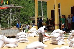 Xuất cấp hơn 1.400 tấn gạo cứu đói cho Quảng Bình và Quảng Trị