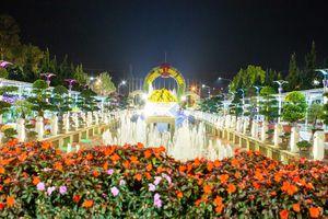 Đà Lạt: Hàng trăm loài hoa trên thế giới sẽ khoe sắc vào đêm