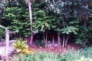 Vĩnh Long: Mất nhà đất vì tài sản chung bị xác định là tài sản riêng