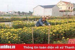Thanh niên 8X vận động thuê đất sản xuất nông nghiệp quy mô lớn