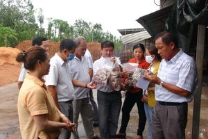 Tham quan, học tập kinh nghiệm mô hình nông nghiệp tại huyện Châu Đức