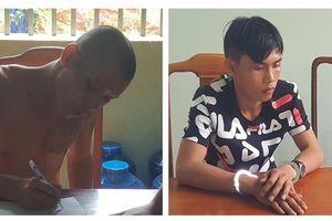 Tạm giữ hai đối tượng chuyên trộm tổ yến ở Bình Phước