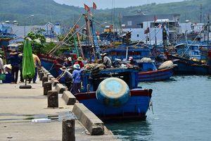 Hồi sinh cho cảng cá Sa Huỳnh
