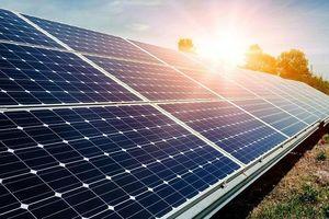 Gấp rút hoàn thành dự án điện mặt trời lớn nhất Việt Nam