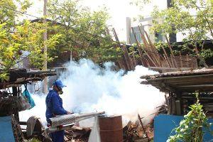 Thông tin về trường hợp mắc virus Zika tại Đà Nẵng
