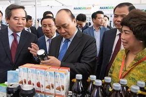 Nghệ An: Cần cơ chế mới để thu hút đầu tư vào nông nghiệp