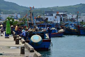 Phạt nặng tàu cá khai thác thủy sản không có giấy phép