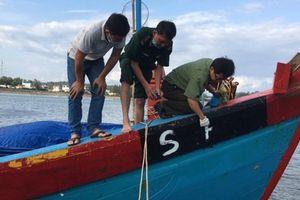 Quảng Ngãi: Phạt 900 triệu đồng tàu cá khai thác thủy sản không phép