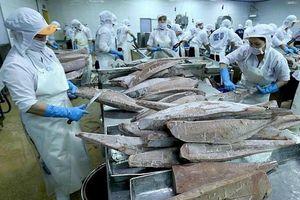 Ảnh hưởng Covid-19, nhu cầu cá ngừ đóng hộp tăng