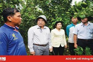 Chào mừng Đại hội đại biểu Đảng bộ xã Vĩnh An lần thứ XVII, nhiệm kỳ 2020 – 2025: Phát triển kinh tế nông nghiệp theo hướng bền vững