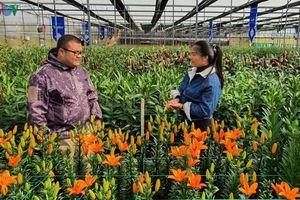 Doanh thu ngành hoa cao nhất trong tất cả các loại cây trồng