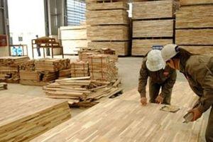 Hàn Quốc cáo buộc gỗ dán Việt Nam bán phá giá 9,15 – 10,65%, Bộ Công Thương phản ứng